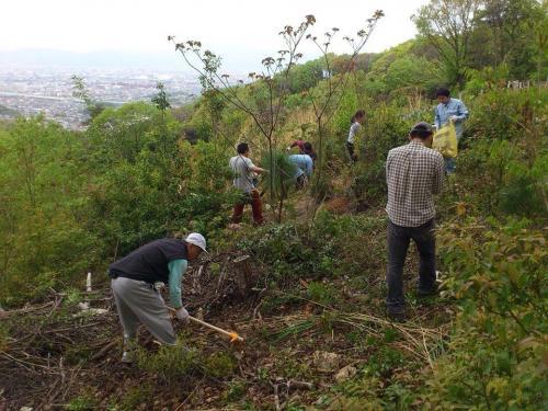 桃山プロジェクト 桃の植樹 大岩山